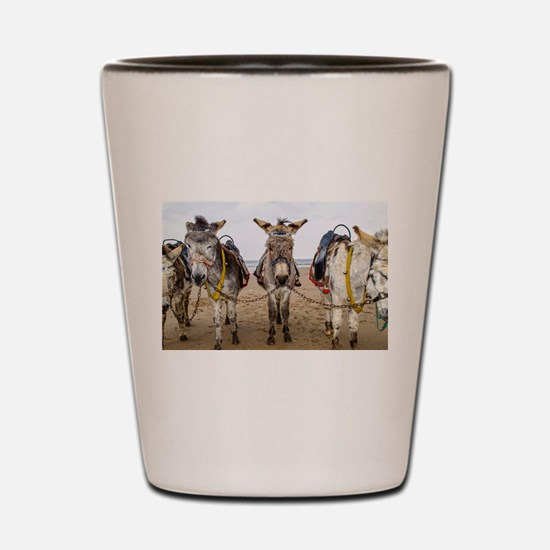 Funny Photography funny Shot Glass