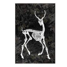 Prancing Deer Skeleton Postcards (Package of 8)
