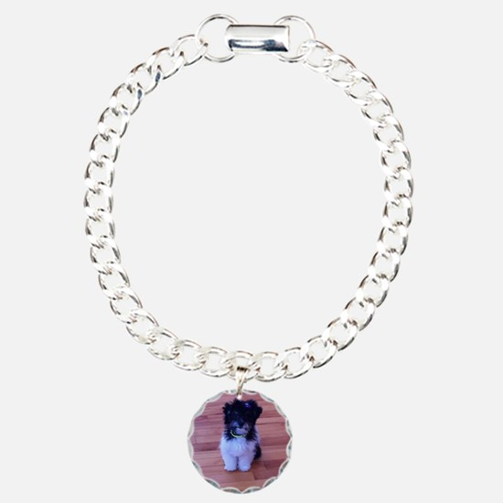 Schnoodle love Charm Bracelet, One Charm