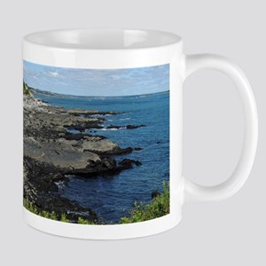 Rocky Shore Mugs