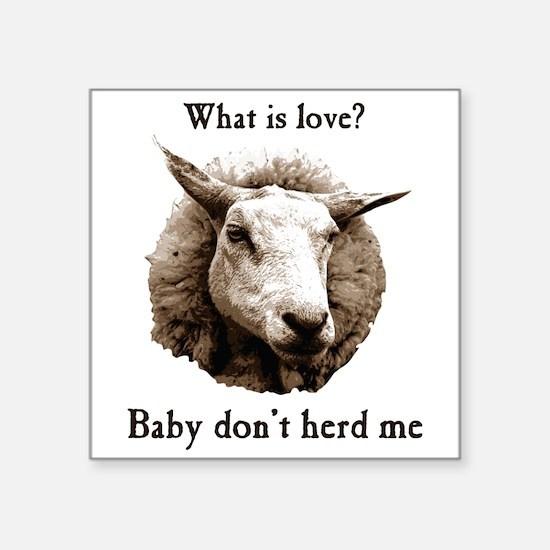 Baby Don't Herd Me Sheep Sticker