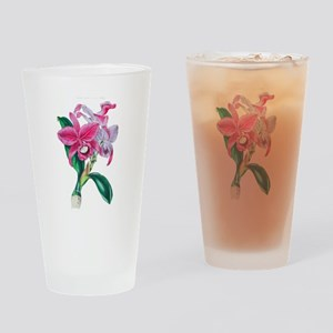 Tropical Pink Cattleya Orchid by Lo Drinking Glass