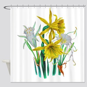 Daffodils and Narcissus by Loudon Shower Curtain