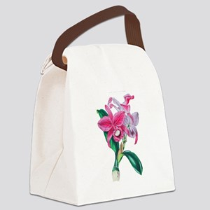 Tropical Pink Cattleya Orchid by Canvas Lunch Bag