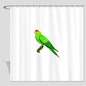 Green Conure Bird Shower Curtain