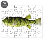Northern Puffer Puzzle