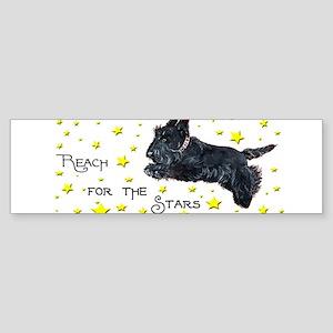 Scottish Terrier Star Bumper Sticker