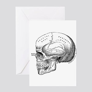Anatomical Greeting Cards