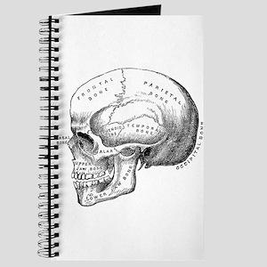 Anatomical Journal