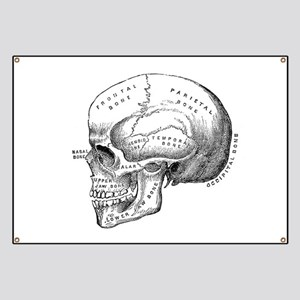 Anatomical Banner