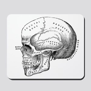 Anatomical Mousepad