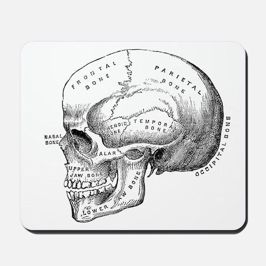 Anatomical Mousepad