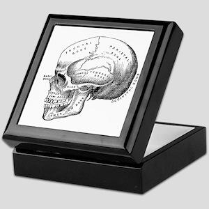Anatomical Keepsake Box