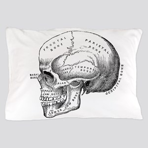 Anatomical Pillow Case