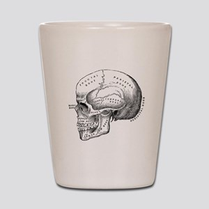 Anatomical Shot Glass