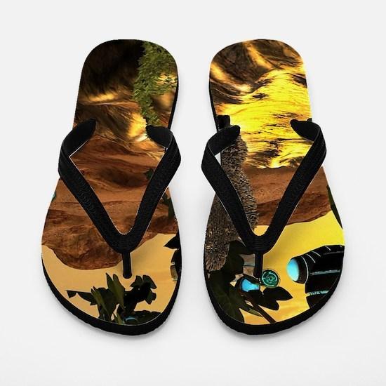 The invasion Flip Flops