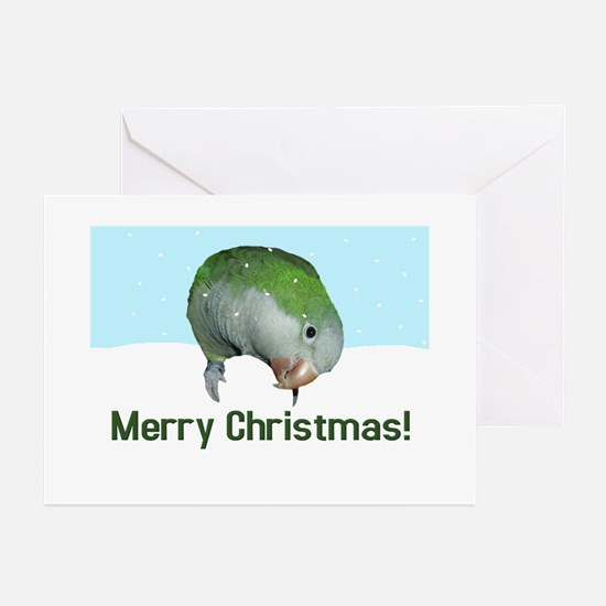 Quaker Parrot Merry Christmas Cards (Pk of 10) Gre