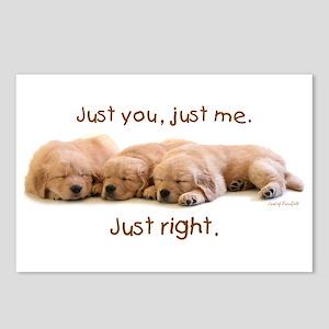 "Golden Retriever ""Just you"" Postcards"