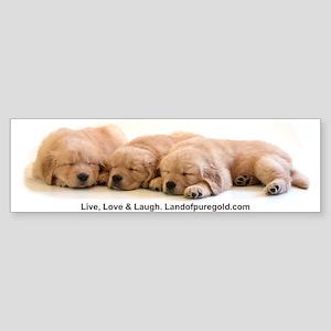 """Golden Retriever """"Three Babies"""" Bumper Sticker"""