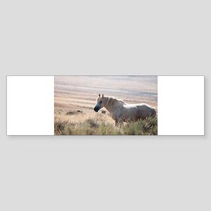 Wild Mustang I Bumper Sticker
