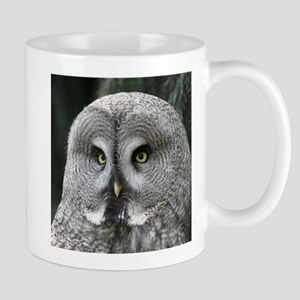 Owl001 Mugs