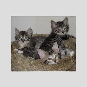 Cute Kittens Throw Blanket