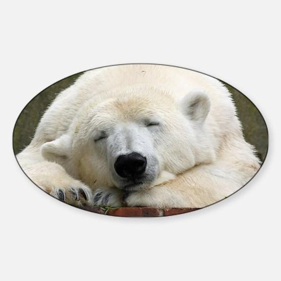 Polar bear 003 Decal