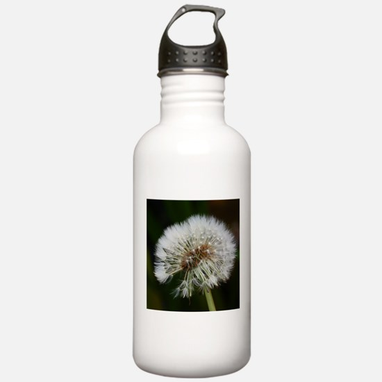 Unique Flying seeds Water Bottle