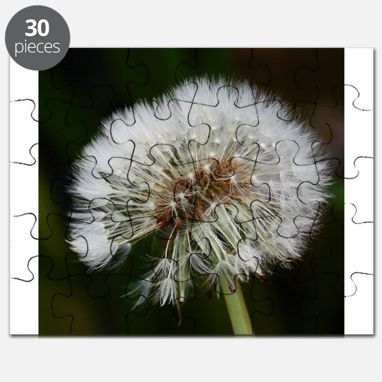 Funny Dandelion seeds blowing in the wind Puzzle