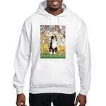 Spring - Tri Aussie 2 Hooded Sweatshirt