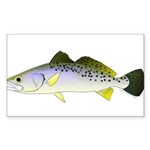 Spotted Seatrout 2 Sticker