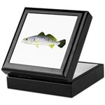 Spotted Seatrout 2 Keepsake Box