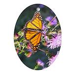 Monarch Butterfly on Purple Milkweed Ornament (Ova