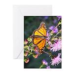 Monarch Butterfly on Purple Milkweed Greeting Card