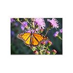Monarch Butterfly on Purple Milkweed 5'x7'Area Rug