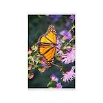 Monarch Butterfly on Purple Milkweed 3'x5' Area Ru