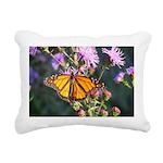 Monarch Butterfly on Purple Milkweed Rectangular C