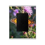 Monarch Butterfly on Purple Milkweed Picture Frame