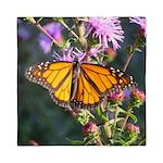 Monarch Butterfly on Purple Milkweed Queen Duvet