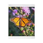 Monarch Butterfly on Purple Milkweed Twin Duvet