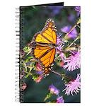 Monarch Butterfly on Purple Milkweed Journal
