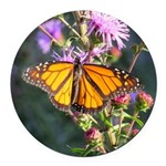 Monarch Butterfly on Purple Milkweed Round Car Mag