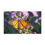 Monarch Butterfly on Purple Milkweed Rectangle Car