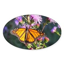 Monarch Butterfly on Purple Milkweed Sticker