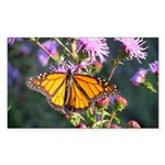 Monarch Butterfly on Purple Milkweed Sticker