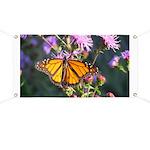 Monarch Butterfly on Purple Milkweed Banner