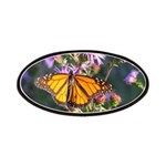 Monarch Butterfly on Purple Milkweed Patches