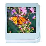 Monarch Butterfly on Purple Milkweed baby blanket