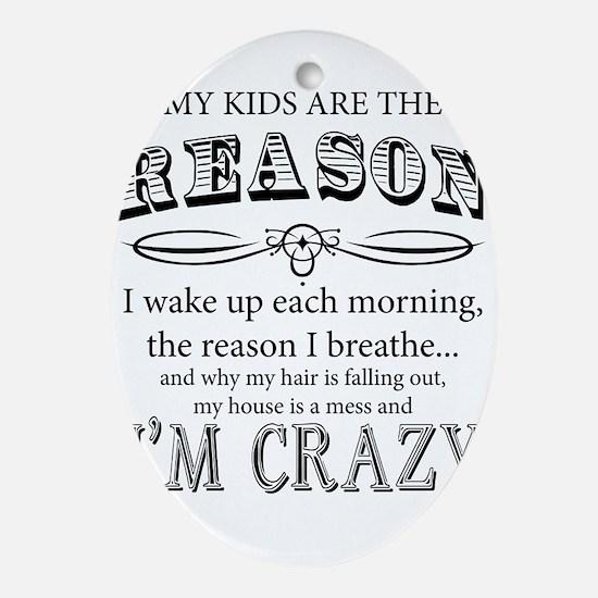 Reason I'm Crazy Ornament (Oval)
