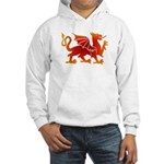 Dragon tattoo Hooded Sweatshirt